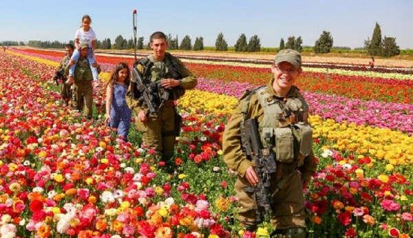 Flowers-in-the-Desert-1140x500
